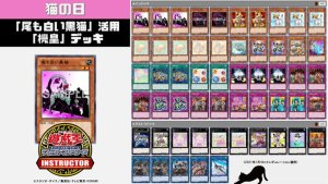 """""""Meklord"""" Deck Featuring """"Dark Cat with White Tail"""" EufwG-dUcAEuI8l"""
