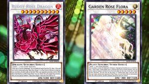 Ruddy Rose Dragon 231430tdk9fazeaf34w0cc