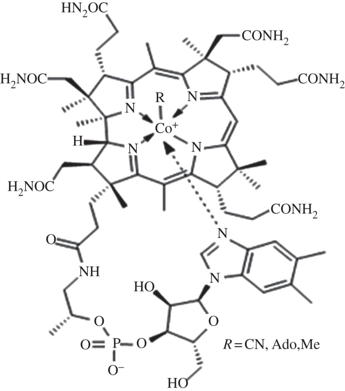 Structure Of Vitamin B12 And B12 Derived Cofactors