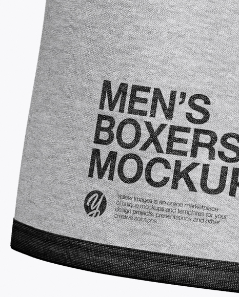 Download Boxer Briefs Mockup Back View Yellowimages