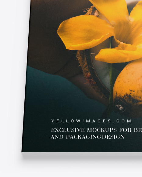 Download A4 Zine Mockup Yellowimages
