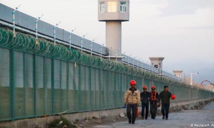 """张杰:中共对维吾尔族的镇压是""""种族灭绝""""吗?"""