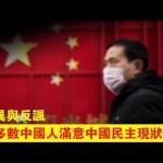 张杰:中国民主调查透露的反讽