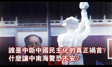 """张杰:""""八九六四""""中断了中国民主化进程吗?"""