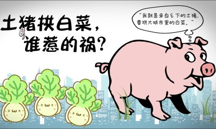 金复新:拱城里的白菜有啥意思?要拱就拱习主席家的