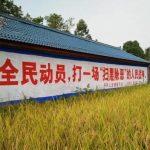 王庆民:折中主义是中国变革之路最不差的选择