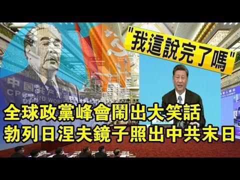 张杰:全球政党峰会的笑话与勃列日涅夫镜子