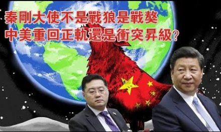 张杰:秦刚大使到任 凸显战狼外交