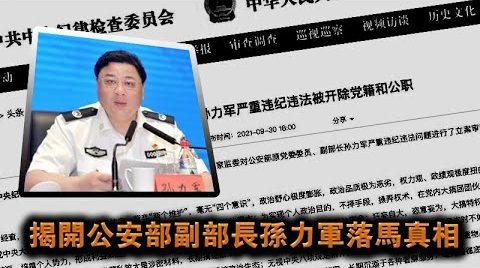 张杰:公安部副部长孙力军落马真相