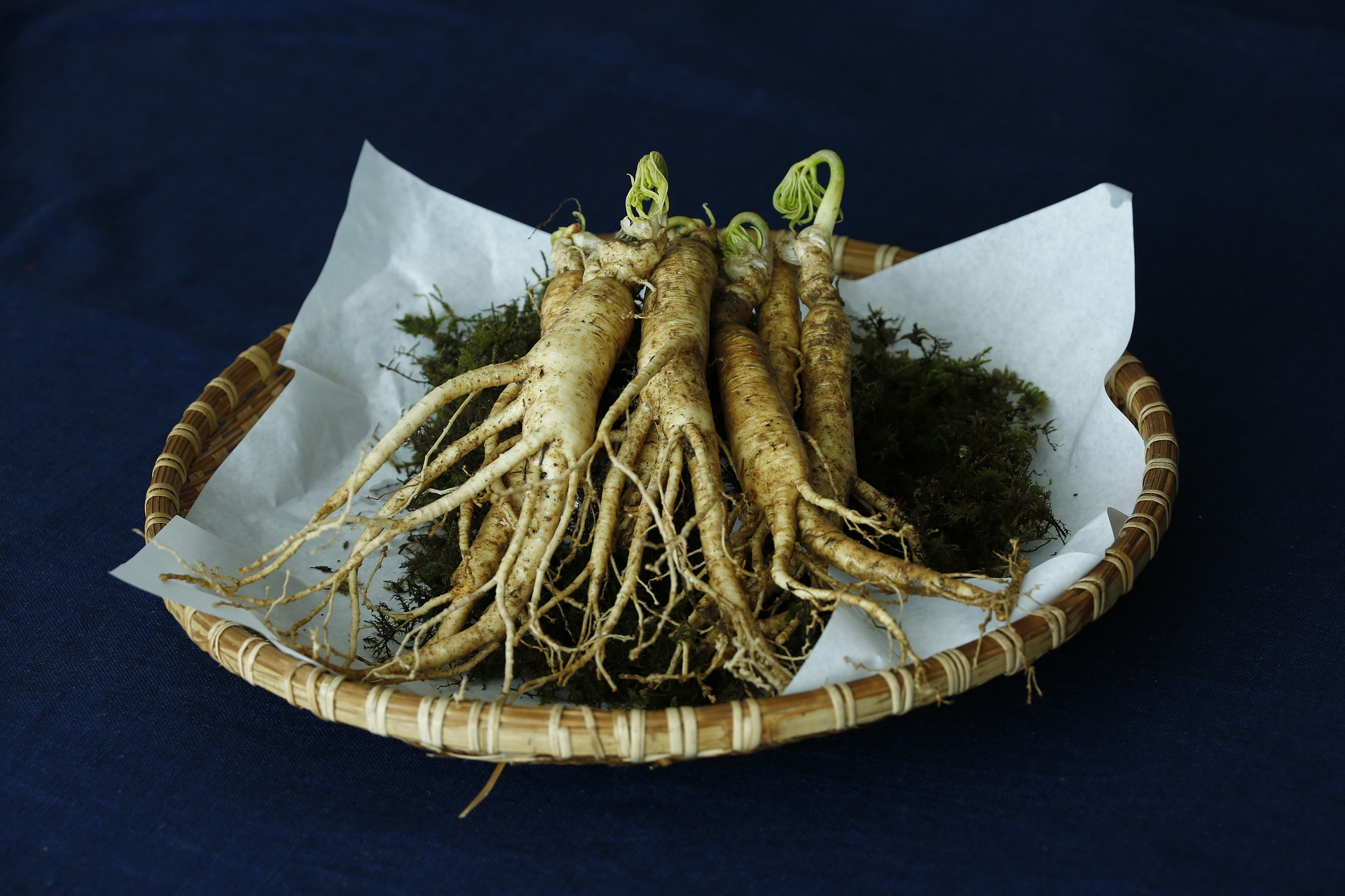 Boost it with Ginseng - Chinese Medicine