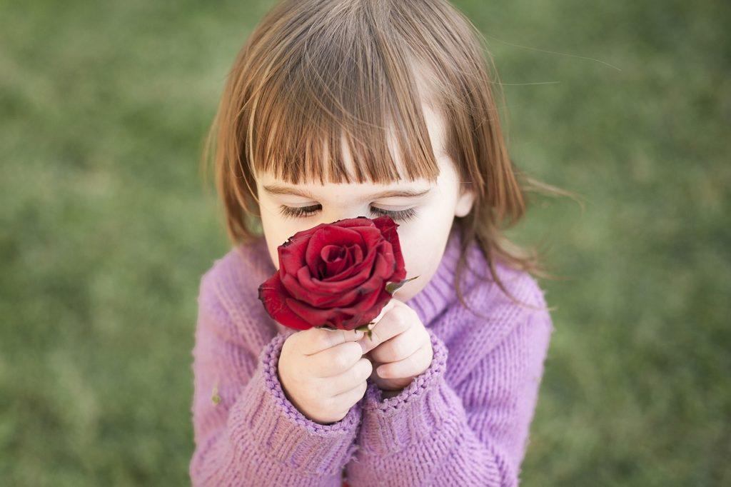 女の子花バラ臭いを嗅ぐ匂い