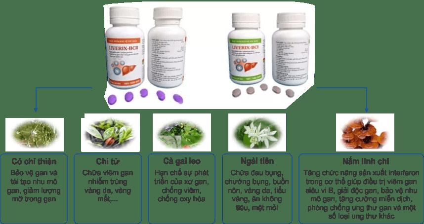 LIVERIX-BC điều trị bệnh gan