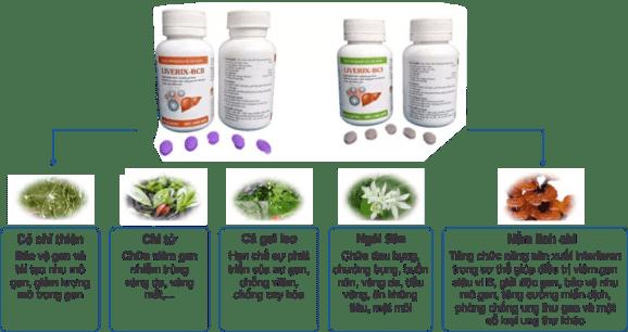 LIVERIX-BC điều trị bệnh gan Điều trị Viêm gan C chỉ với 12 tuần thao duoc ganTam Duc 2 859