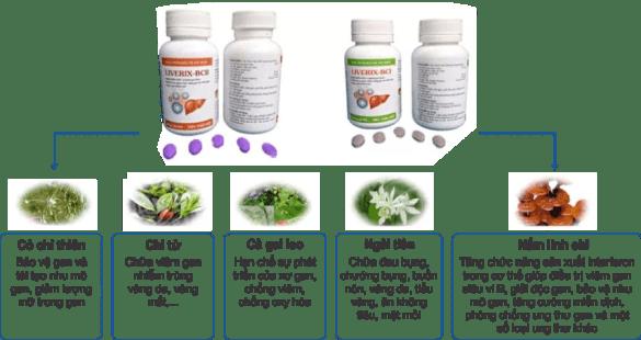 LIVERIX-BC điều trị bệnh gan Phương thuốc đẩy lùi Viêm gan C đã có mặt tại Việt Nam thao duoc ganTam Duc 2 859