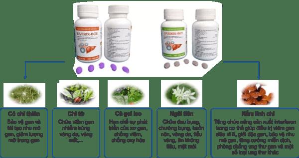 LIVERIX-BC điều trị bệnh gan Điều trị viêm gan B – C và xơ gan tại Phòng khám chuyên gan Tâm Đức thao duoc ganTam Duc 2 859