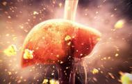 Bệnh Gút có ăn được rau lang không