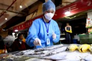 Trung Quốc nói virus corona trên bao bì thực phẩm đông lạnh có thể lây nhiễm