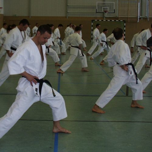ronald-fromm-im-trainingslager-bei-sensei-mead