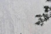 Через толщу падающего снега едва можно увидеть человека на стене