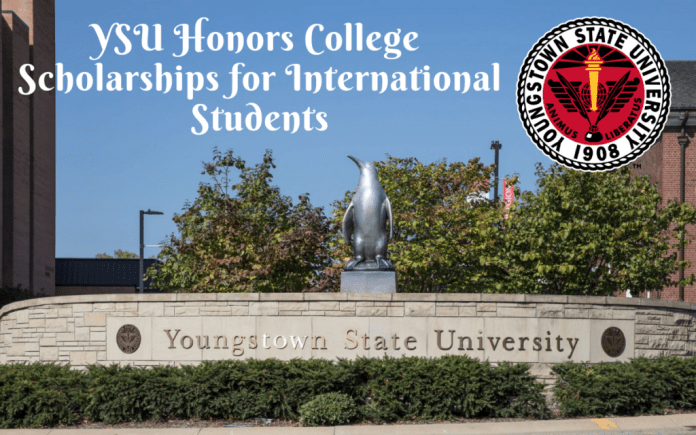 Image result for YSU Honors colleges programmes for International Students in the United States