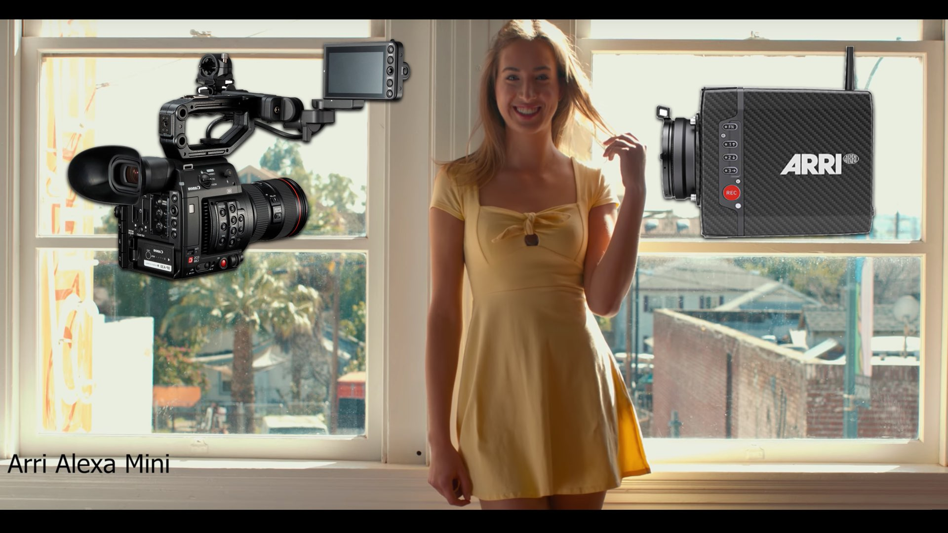 ARRI ALEXA Mini vs Canon C200: A Cinematographic Comparison - Y M