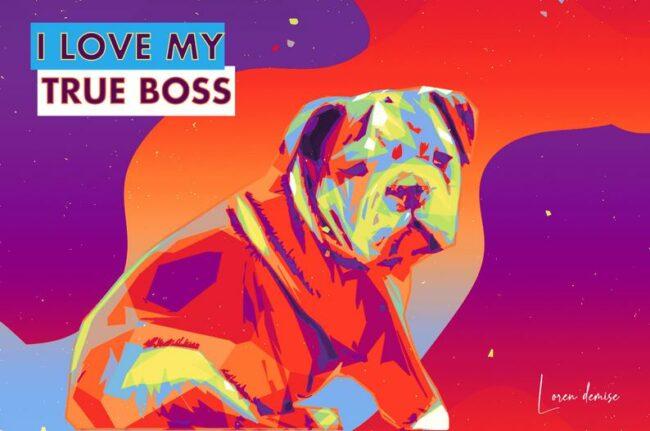 personalized pet canvas art, colorful pop art canvas, pet gift 2