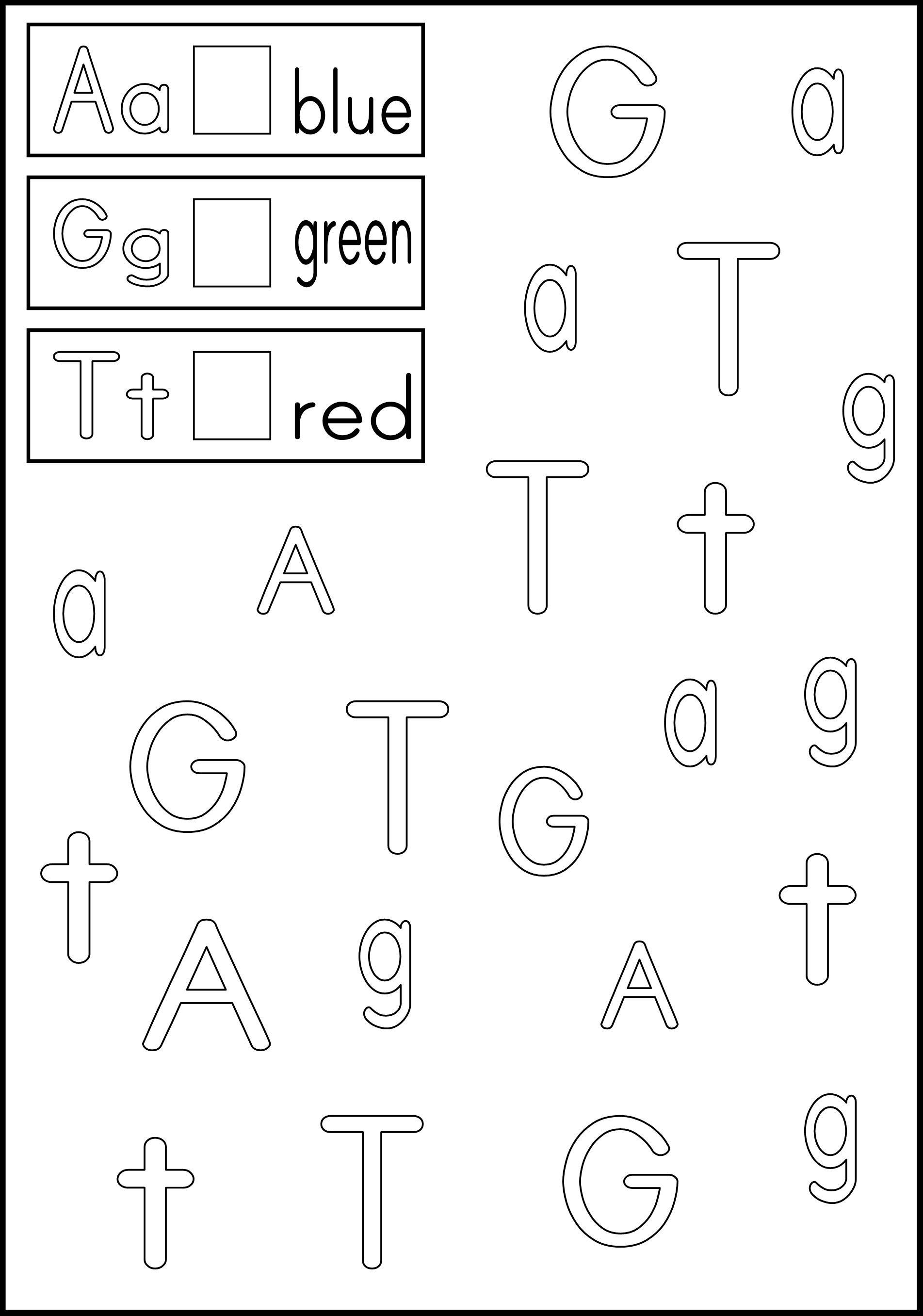Esl Alphabet Worksheets Free Letter Worksheets