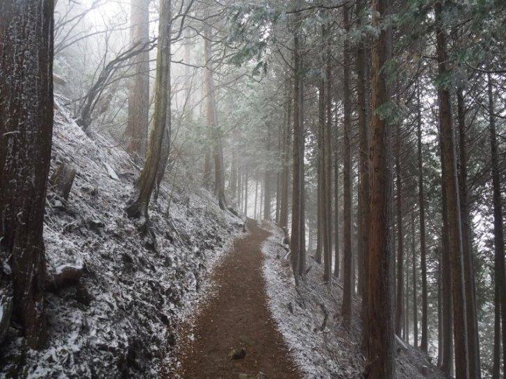 六合目 登山道