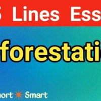 Essay on Deforestation in English || Deforestation paragraph || Deforestation cause and effect