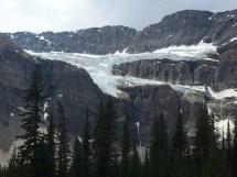 Crowfoot Glacier, Trans Canada Highway, Banff NP