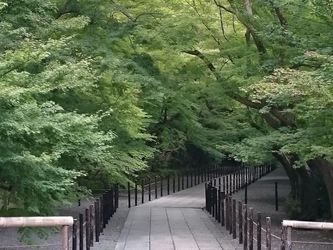 光明寺_トンネル_1