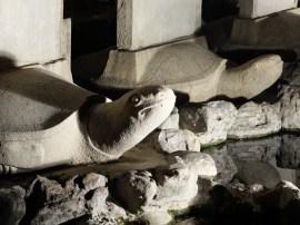 Tortues qui représentent la dynastie Ching.