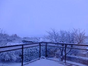 A 7h du matin sur notre balcon