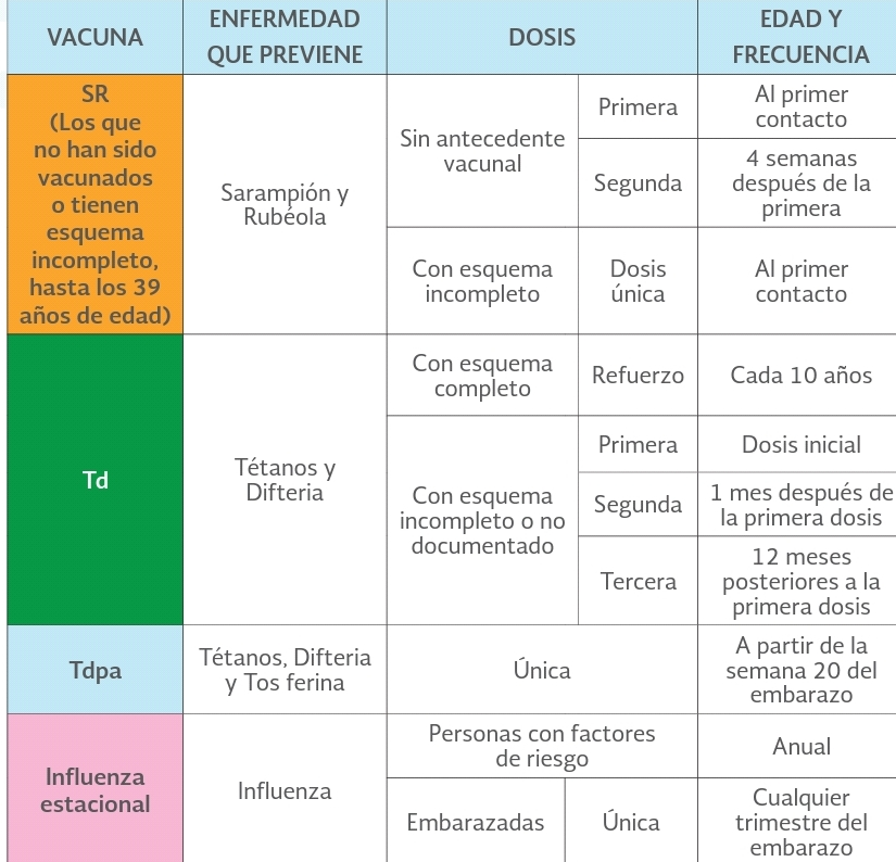 Esquema de Vacunación del Hombre y Mujer de 20 a 59 Años