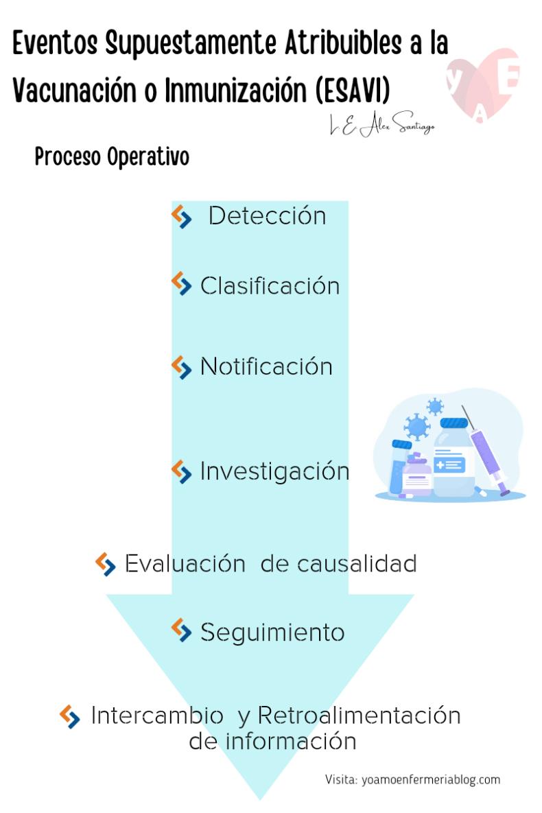 Proceso Operativo de ESAVI