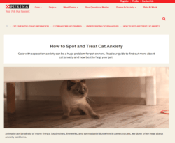 cat-anxiety-purina-250x205 Jono reviews: Cats Protection