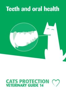 teeth-pdf-212x300 Jono reviews: Cats Protection