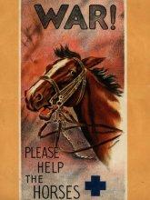 Por favor ayuda a los caballos