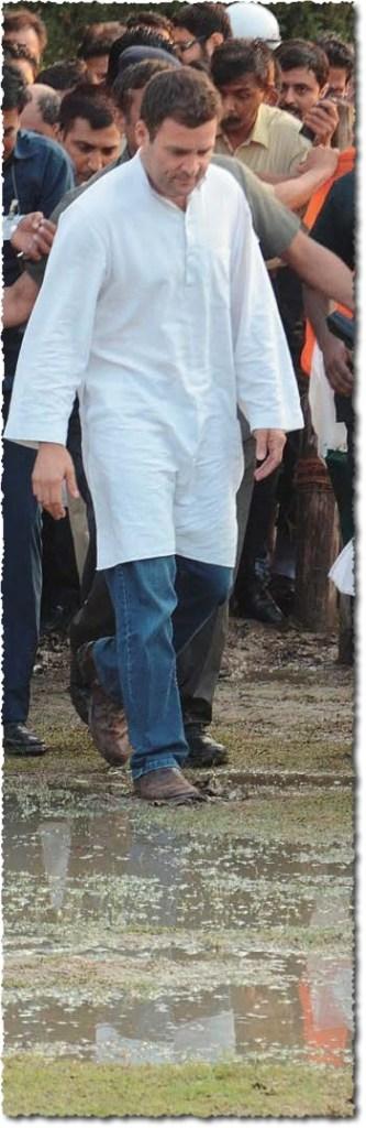 ראהול גאנדהי, ״הנסיך״ בלשונו המושחזת של נארנדרה מודי, יהיה ראש הממשלה והיה כי מפלגתו תנצח. אבל איש אינו מאמין בנצחון כזה. יש אומרים שראהול עצמו כבר הסתגל לתבוסה. בינתיים הוא מבוסס בביצה עמוקה, כמו בצילום הזה, מן העמוד הראשון של העתון הבנגאלי ׳אאג׳קאל׳, היוצא בקולקאטה (כלכתה), עשרים-וששה במארס 2014