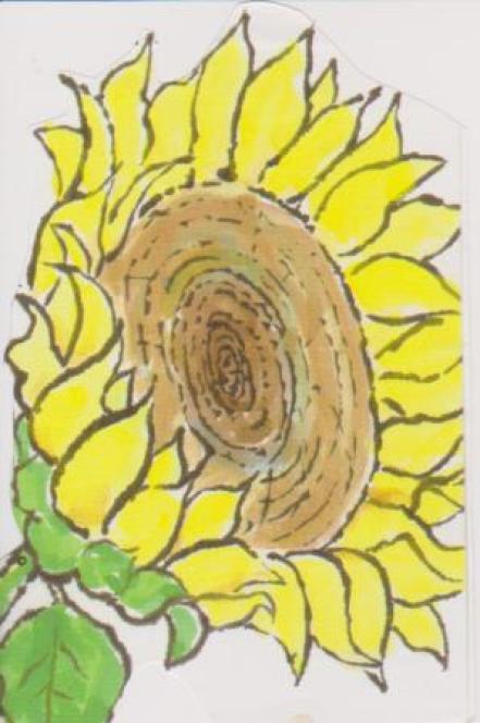 ヒマワリの塗り絵5
