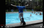 5 Hilarious Videos of Dogs in Water