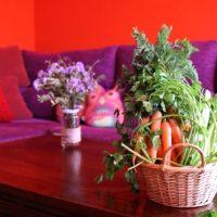 Verduras para decorar