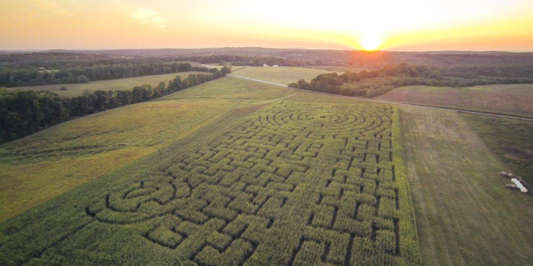 Corn Maze Each Fall - Yoders' Farm