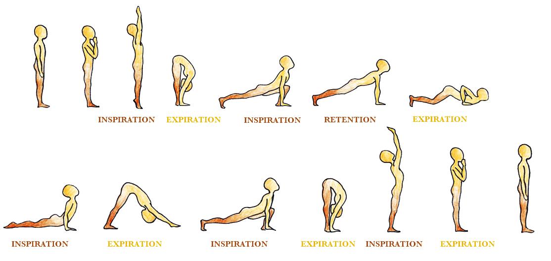 surya namaskar salutation au soleil yoga respiration
