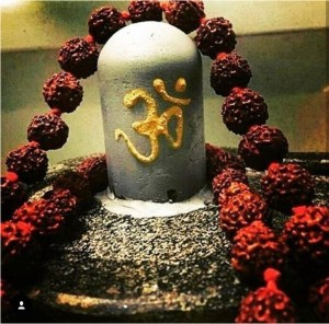 shiva lingam hd wallpapers Beautiful Photographs 821 best Mahadev images on Pinterest