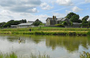 Nettlecombe_Farm_Pond_Scene_1
