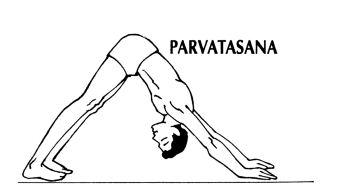 Parvatasana (Mountain pose) Surya Namaskar Step 8