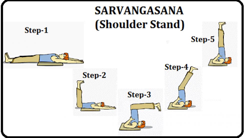 सर्वांगासन योग की जानकारी - Sarvangasana Yoga: Steps, Benefits
