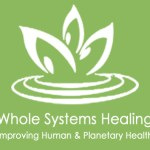 Whole Sytems healing