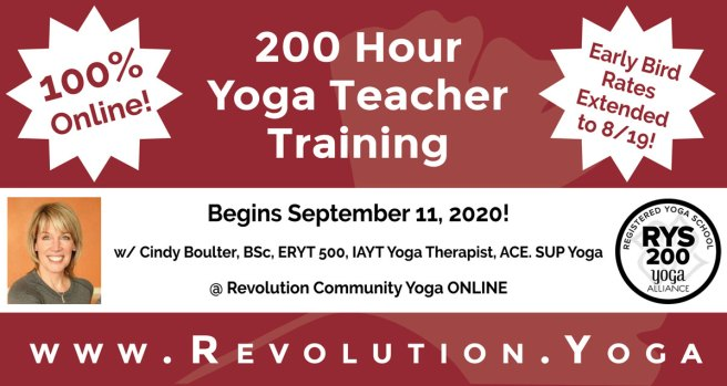 200 Hour Online Yoga Teacher Training Revolution Community Yoga Of Acton Ma In Studio Online